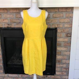 💛New w/Tag! J Crew  Textured Cotton Dress -SZ 12